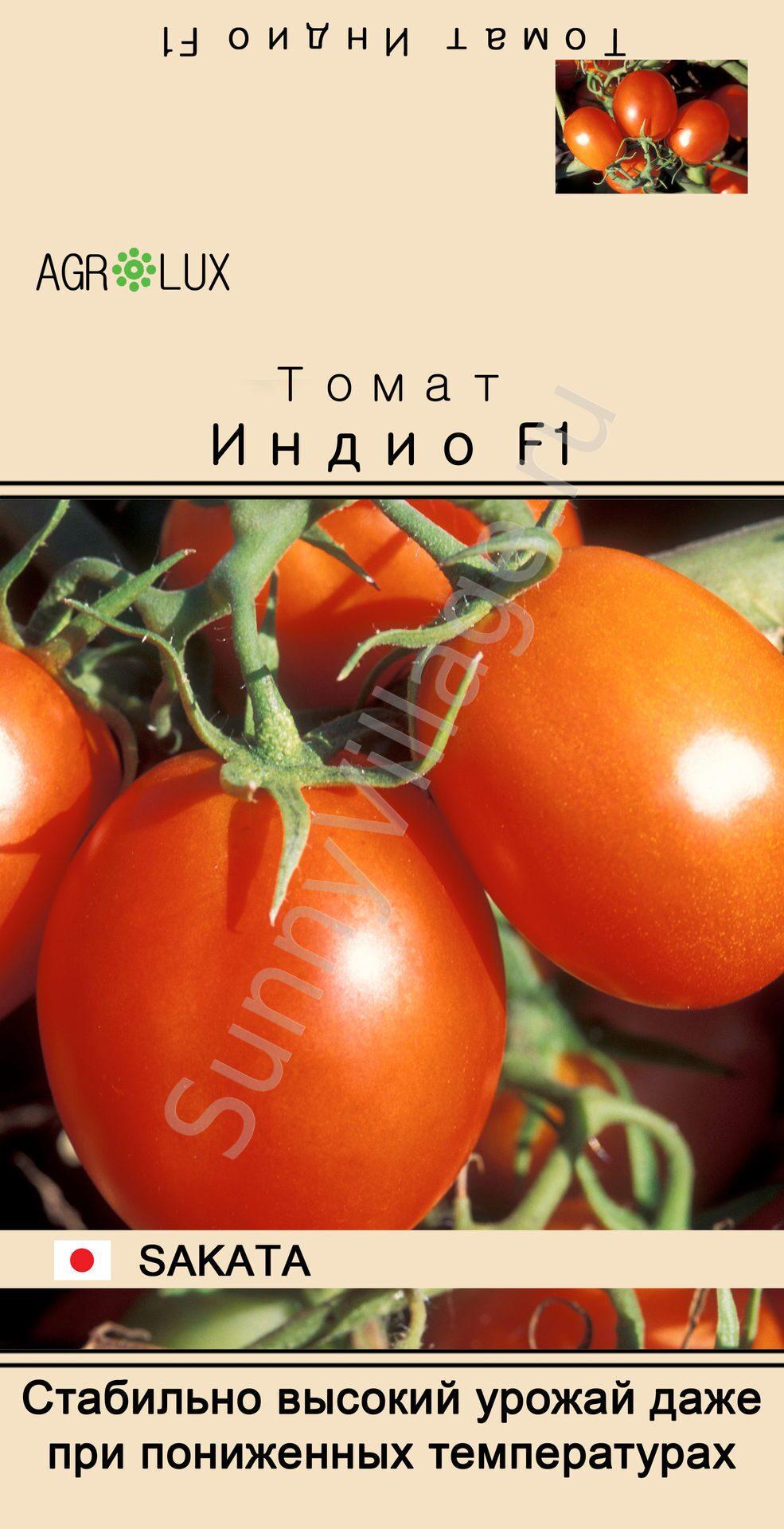 Томат индио f1 выращивание